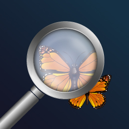 magnifying-glass-pro-it