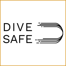 DiveSafe icon