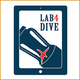 lab4dive-it